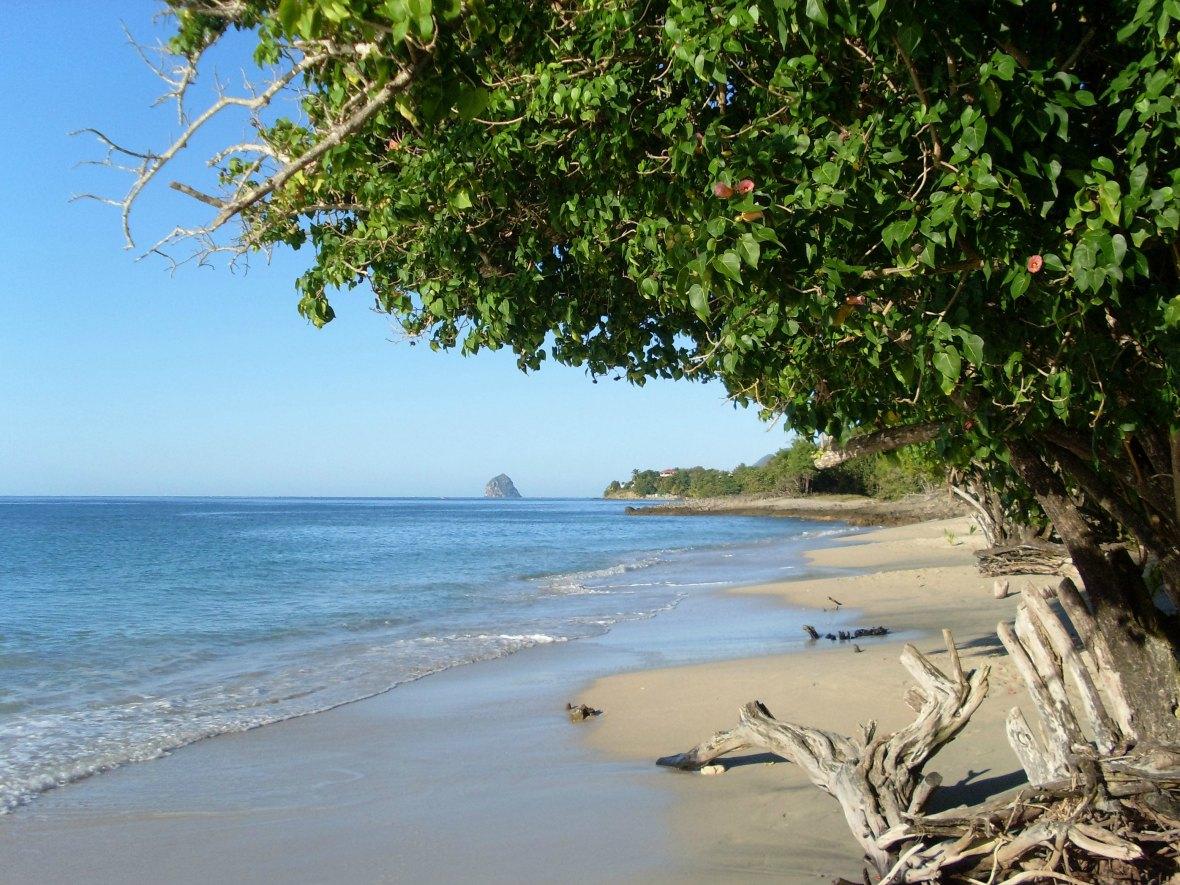 Martinique anse mabouya sainte luce breizh trotteuse - Sainte luce martinique office du tourisme ...