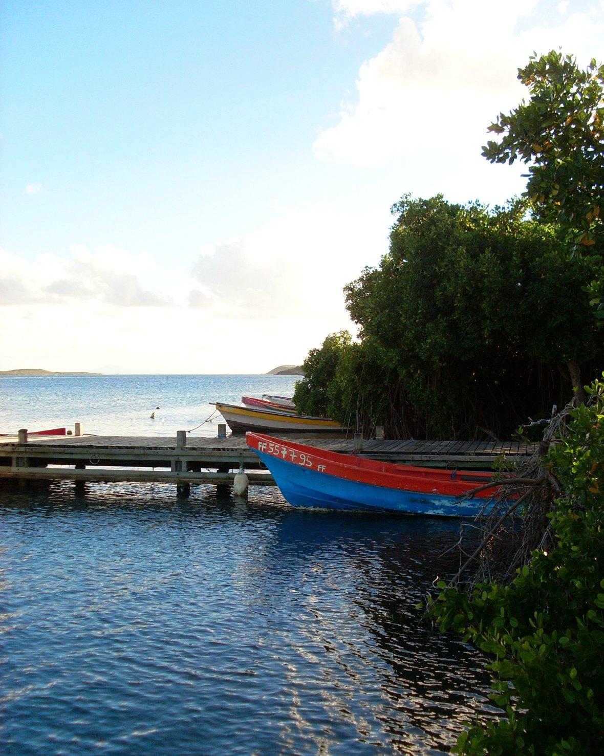 Martinique - Anse Michel (1)