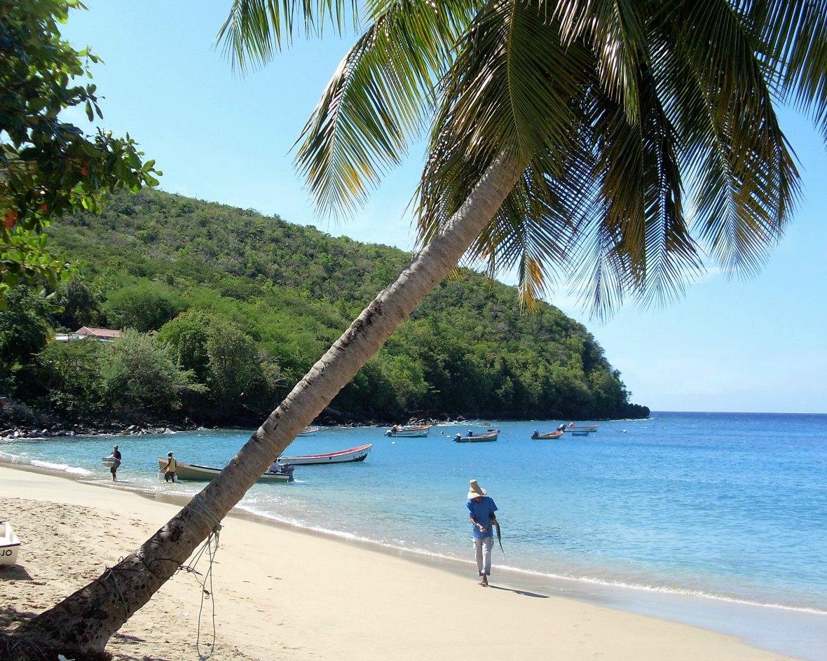 Martinique - Anse Dufour (2)
