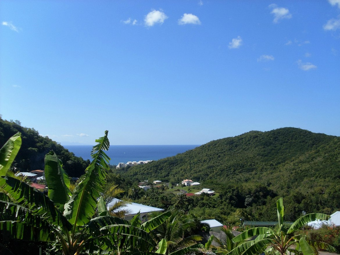 Martinique - Sainte Luce (5)