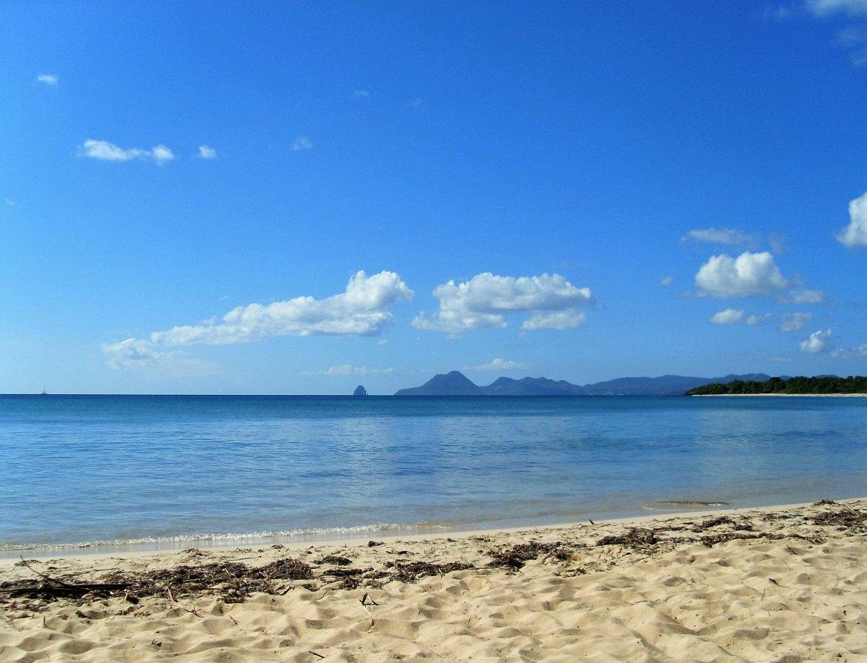 Martinique - Salines (1)