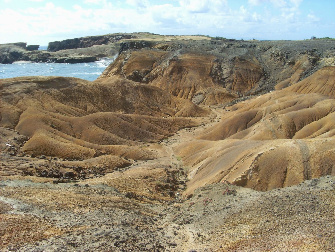 Martinique - Savane des petrifications (1)