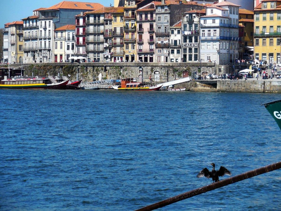 Porto - Douro (6)