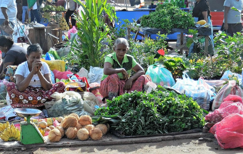 Sri Lanka - Negombo (2)