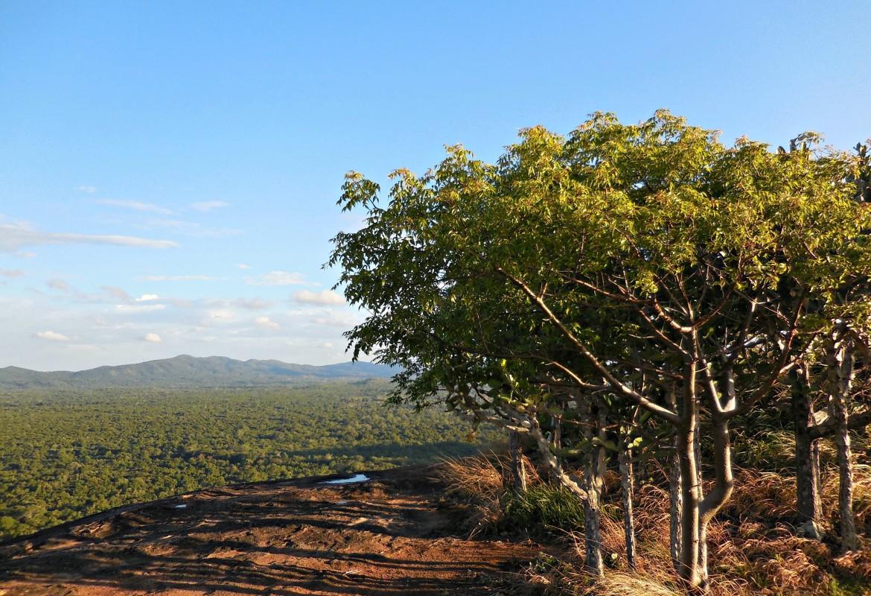 Sri Lanka - Pidurangala Rock (4)