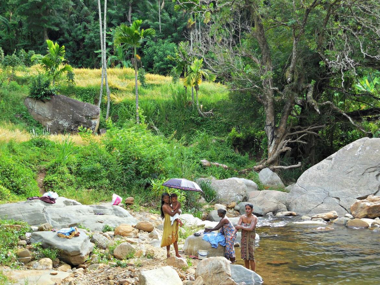 Sri Lanka - Knuckles range (2)