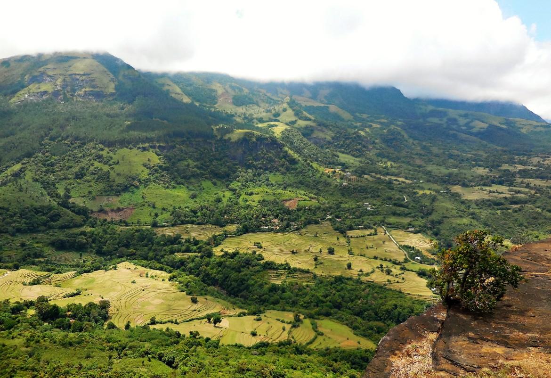 Sri Lanka - Knuckles range (7)