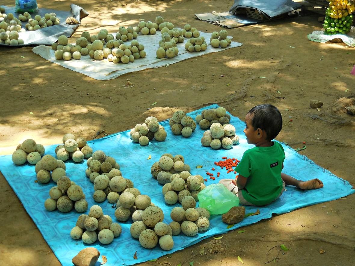 Sri Lanka - Mirissa (3)