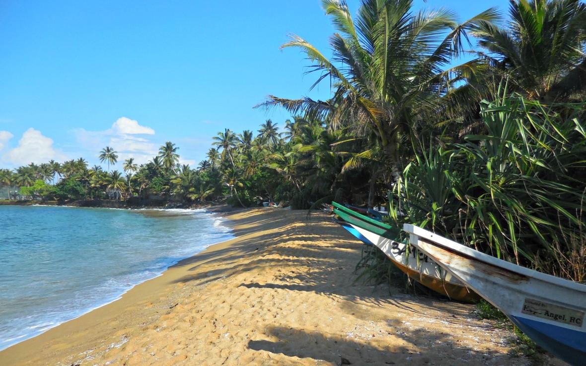 Sri Lanka - Mirissa (5)