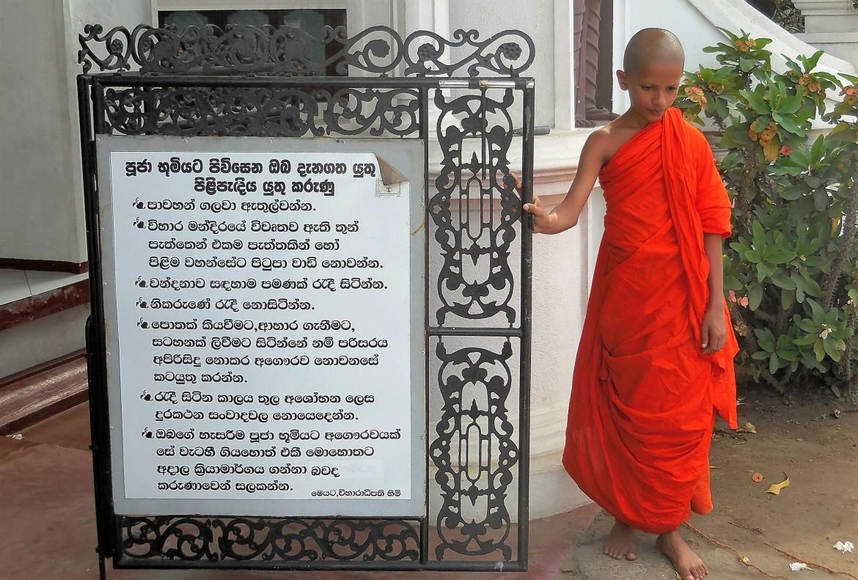 Sri Lanka - Mirissa (9)