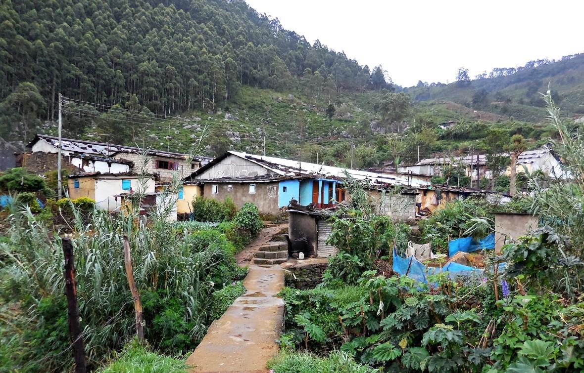Sri Lanka - Village (5)