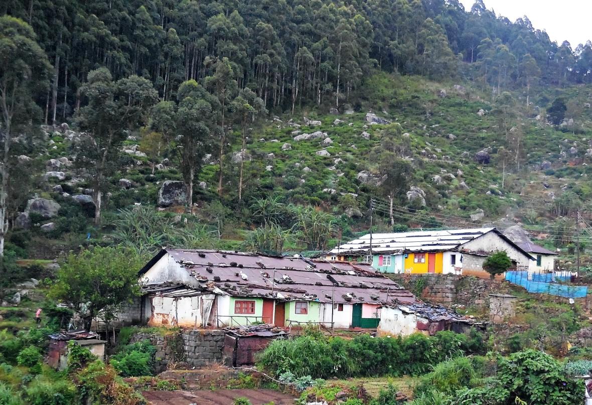 Sri Lanka - Village (6)