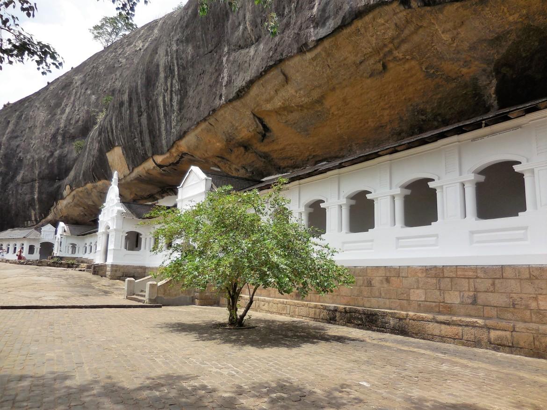Sri Lanka - Dambulla (8)