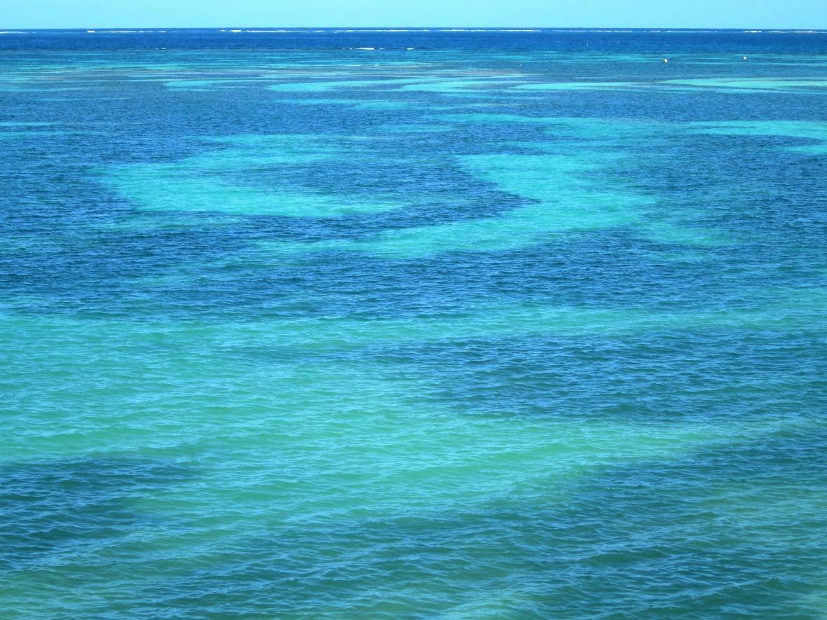 Martinique - Pointe Faula (2)
