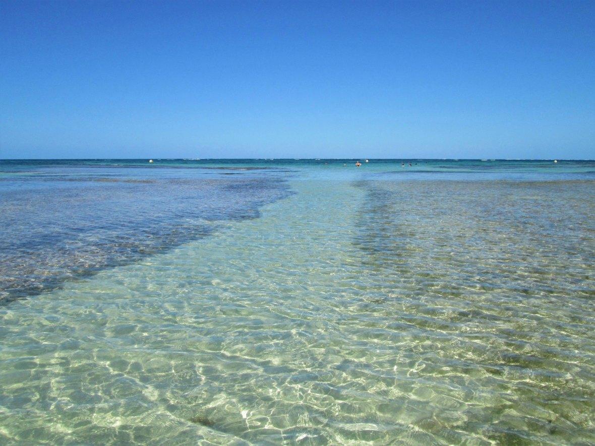 Martinique - Pointe Faula (4)