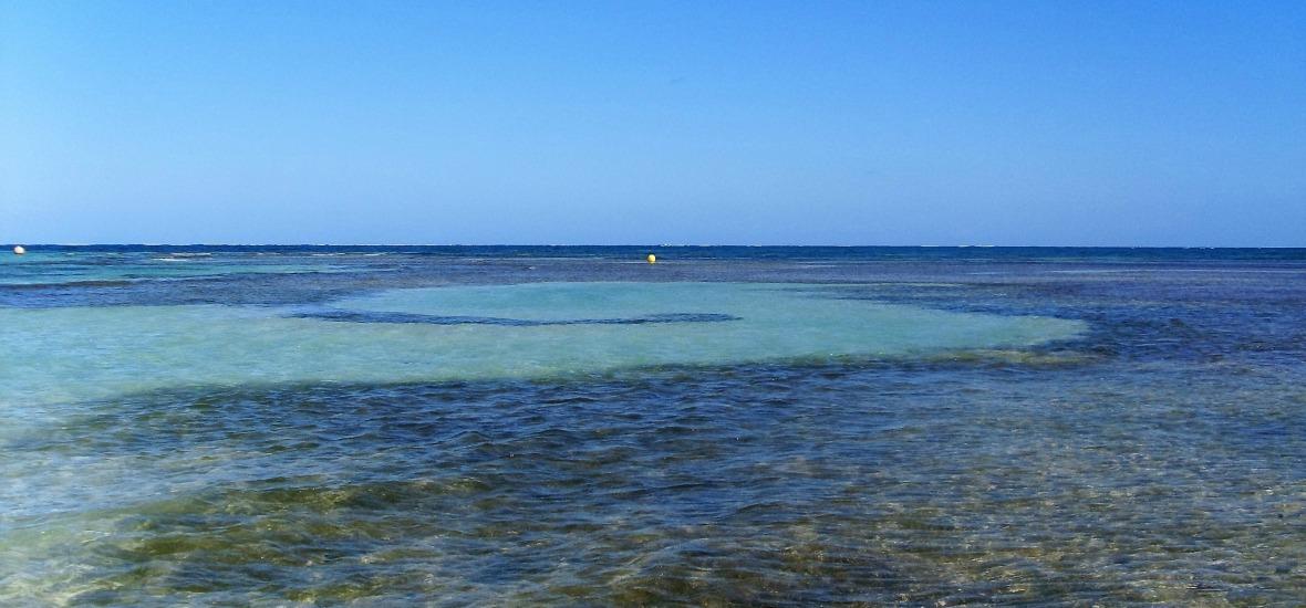 Martinique - Pointe Faula (5)