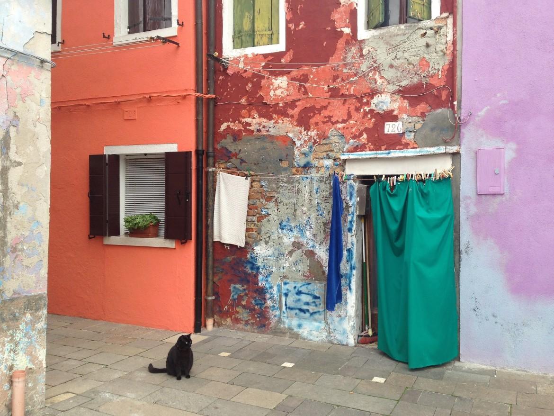 Venise - Burano (5)