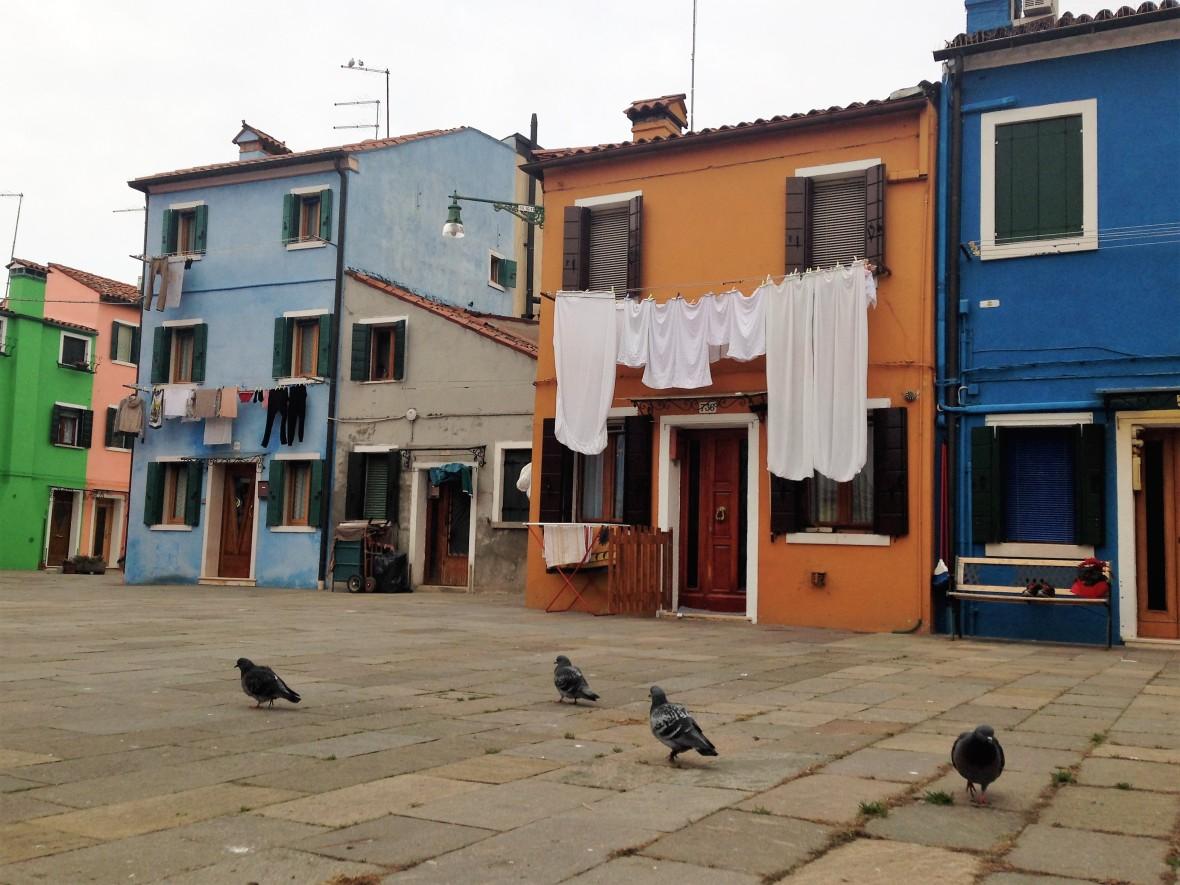 Venise - Burano (6)