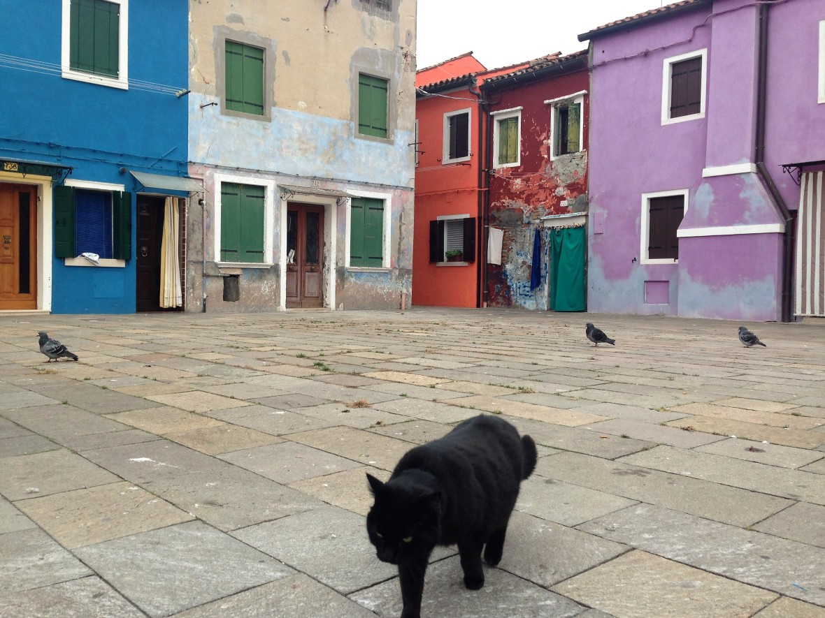 Venise - Burano (7)