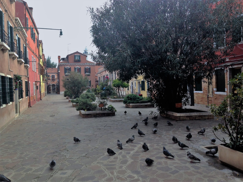 Venise - Murano (7)