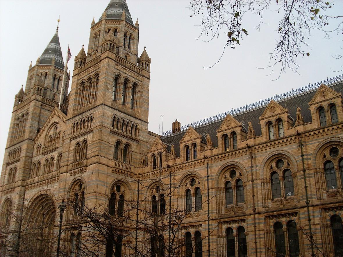 Londres - Musée d'Histoire Naturelle (1)