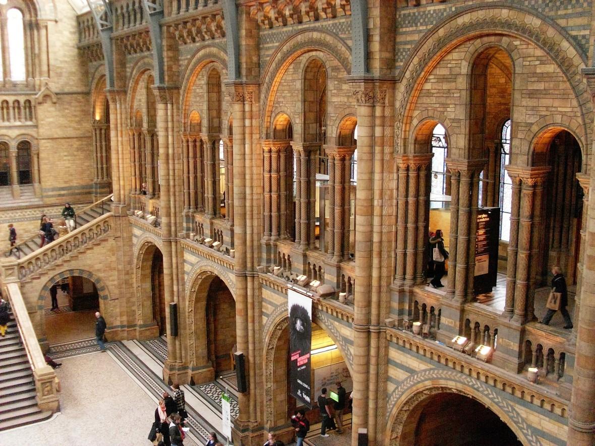 Londres - Musée d'Histoire Naturelle (8)