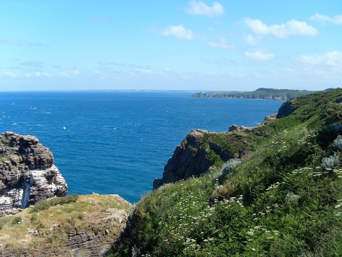 Bretagne - Cap Fréhel (2)