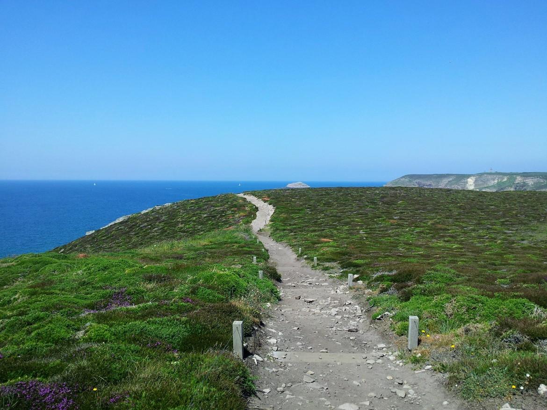 Bretagne - Cap Fréhel (3)