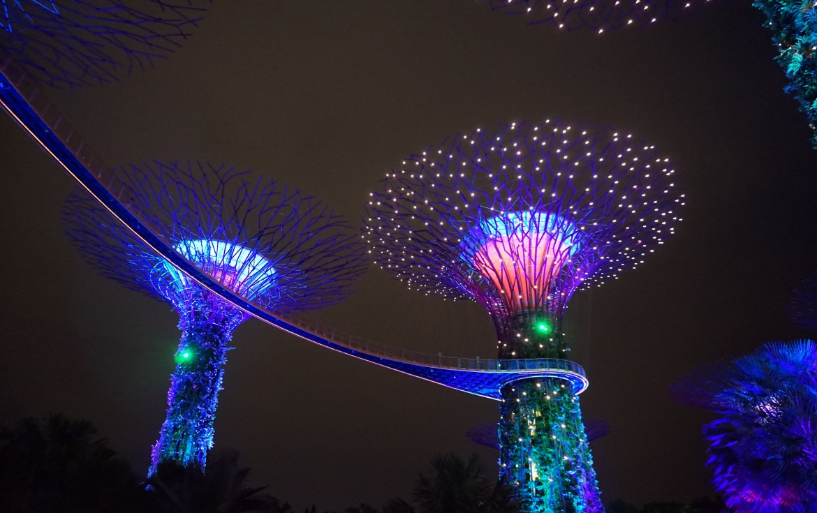 SIngapoour - Gardens by the bay night (1)