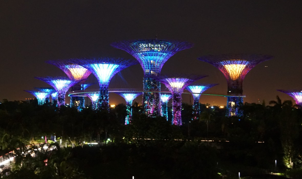 SIngapoour - Gardens by the bay night (2)