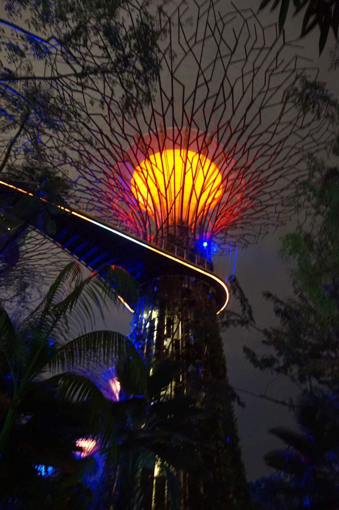 SIngapoour - Gardens by the bay night (3)