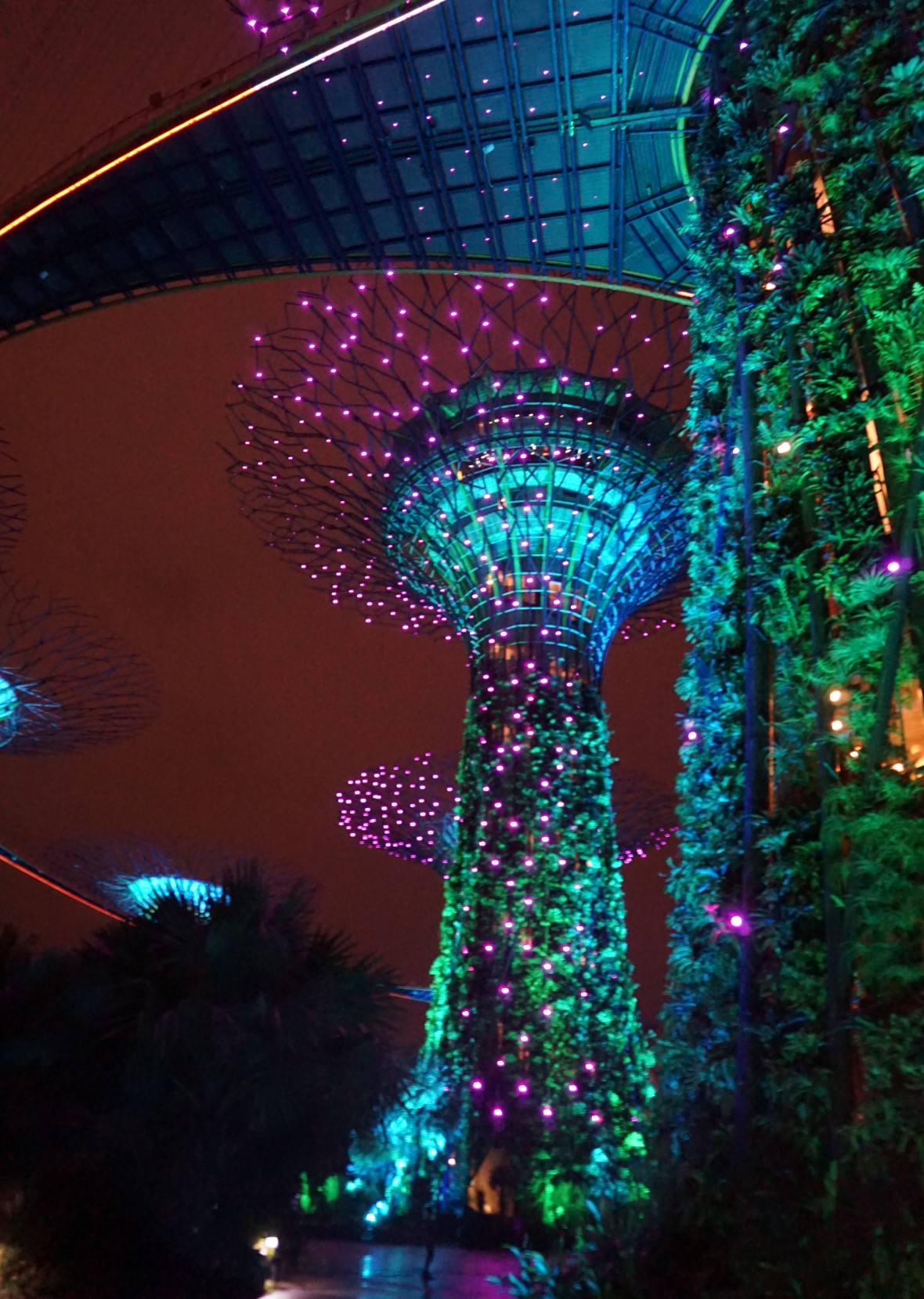 SIngapoour - Gardens by the bay night (4)