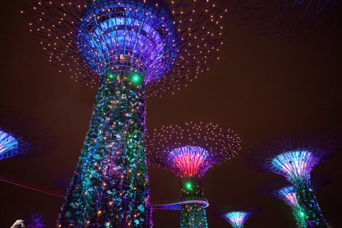 SIngapoour - Gardens by the bay night (5)