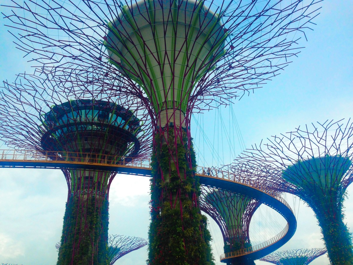 Singapour - Gardens by the bay (1)