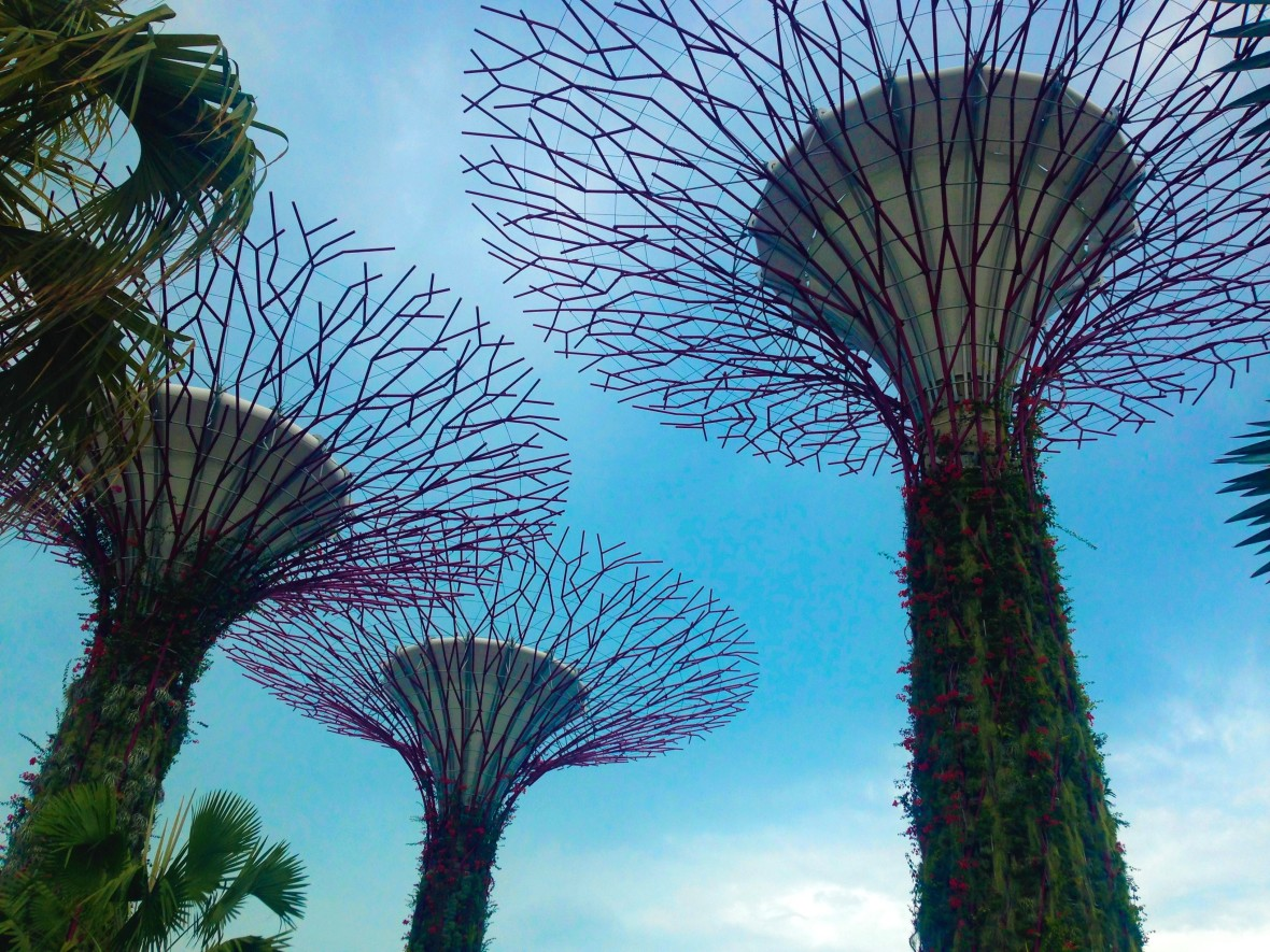 Singapour - Gardens by the bay (4)