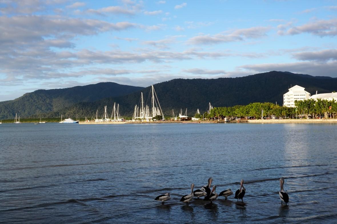 Australie - Cairns (2)