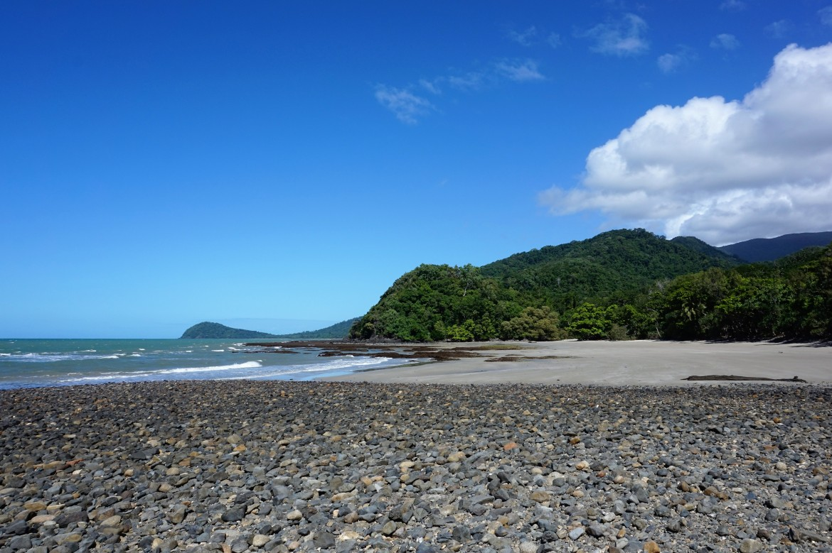 Australie - Daintree Rainforest (1)