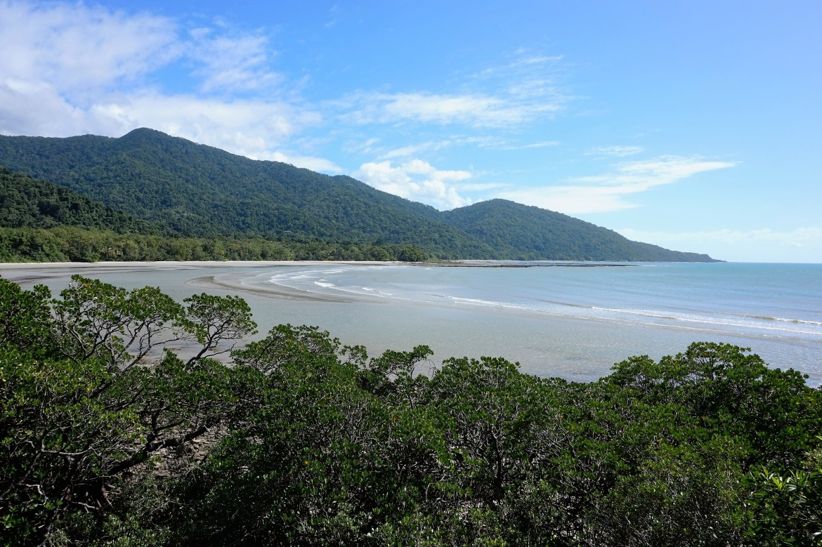 Australie - Daintree Rainforest (3)