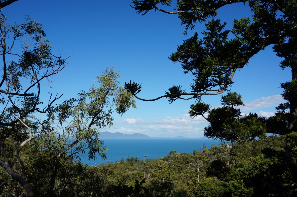 Australie - Magnetic Island  (8)