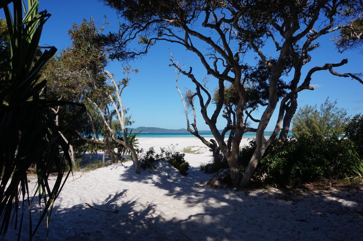 Australie - Whitsundays sailing (8)
