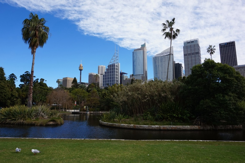 Australie - Sydney (5)