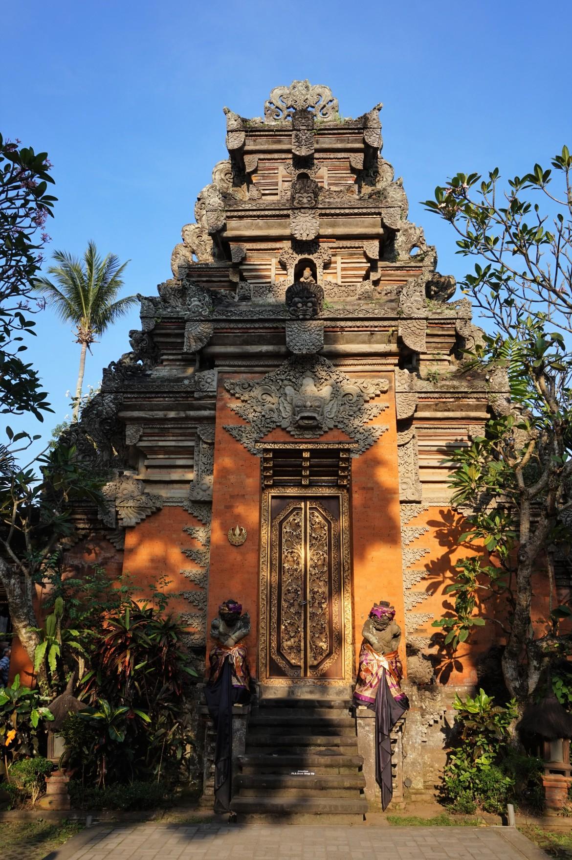 Indonésie - Bali - Ubud (15)