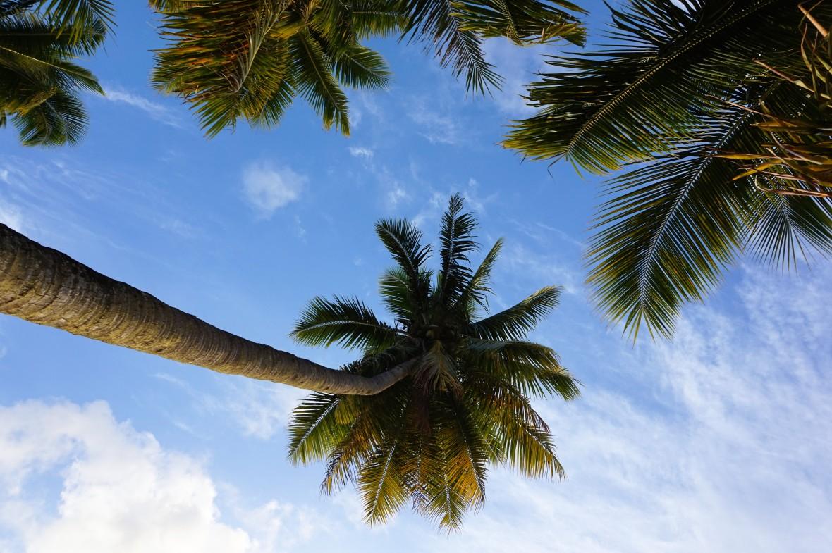 Nouvelle Calédonie - Ile des pins (7)